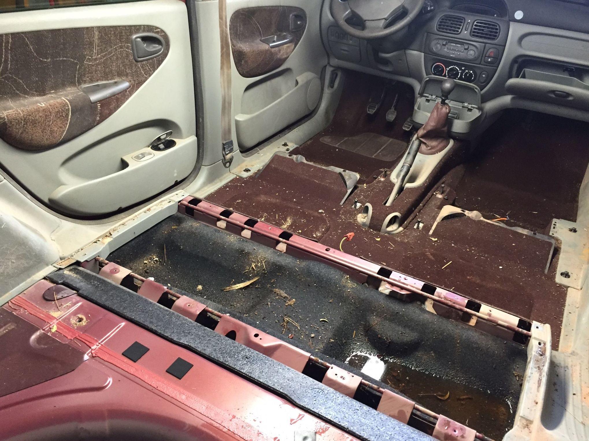Limpieza de tapicer as de coche valencia limpieza de - Tapicerias en valencia ...