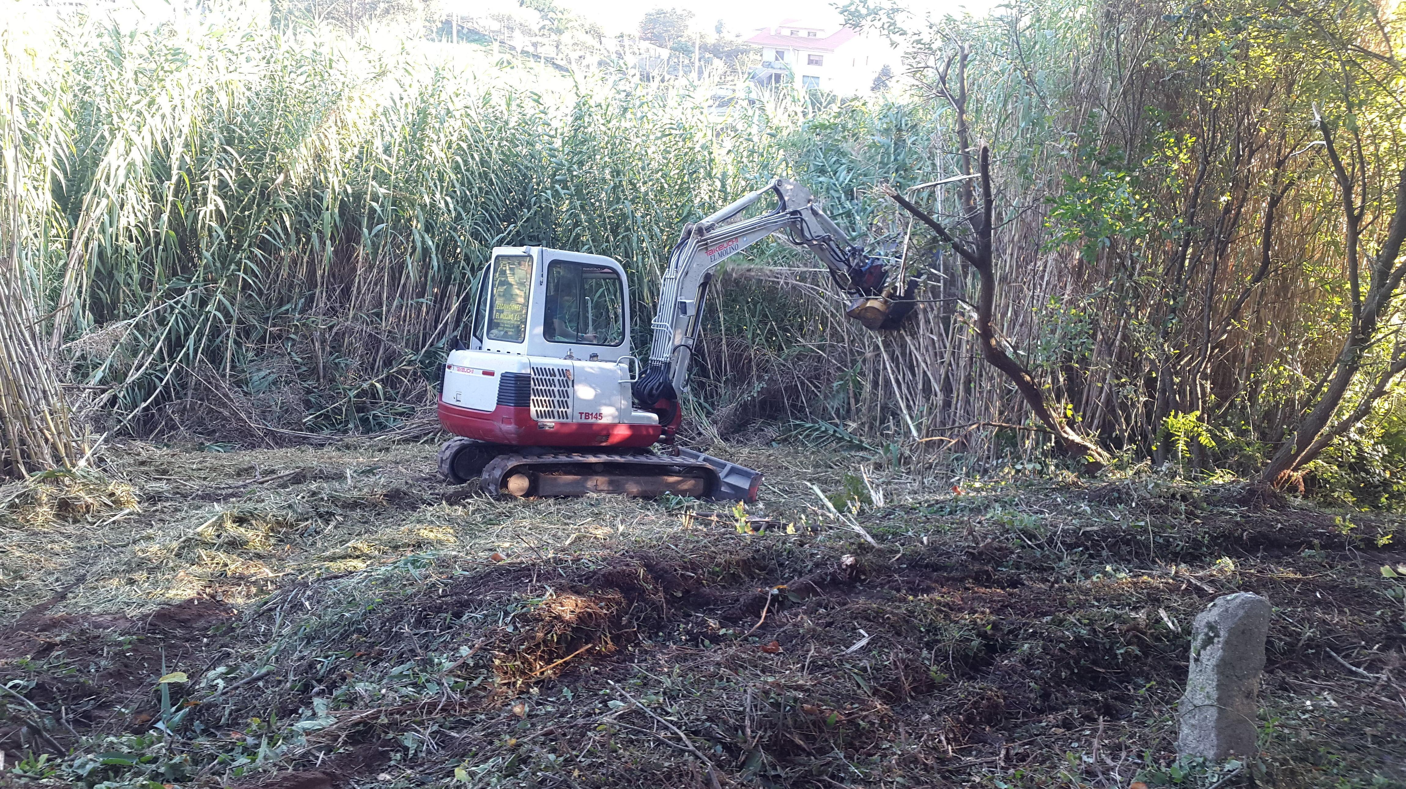 Foto 25 de Excavaciones en  | Excavaciones El Molino, S.L.