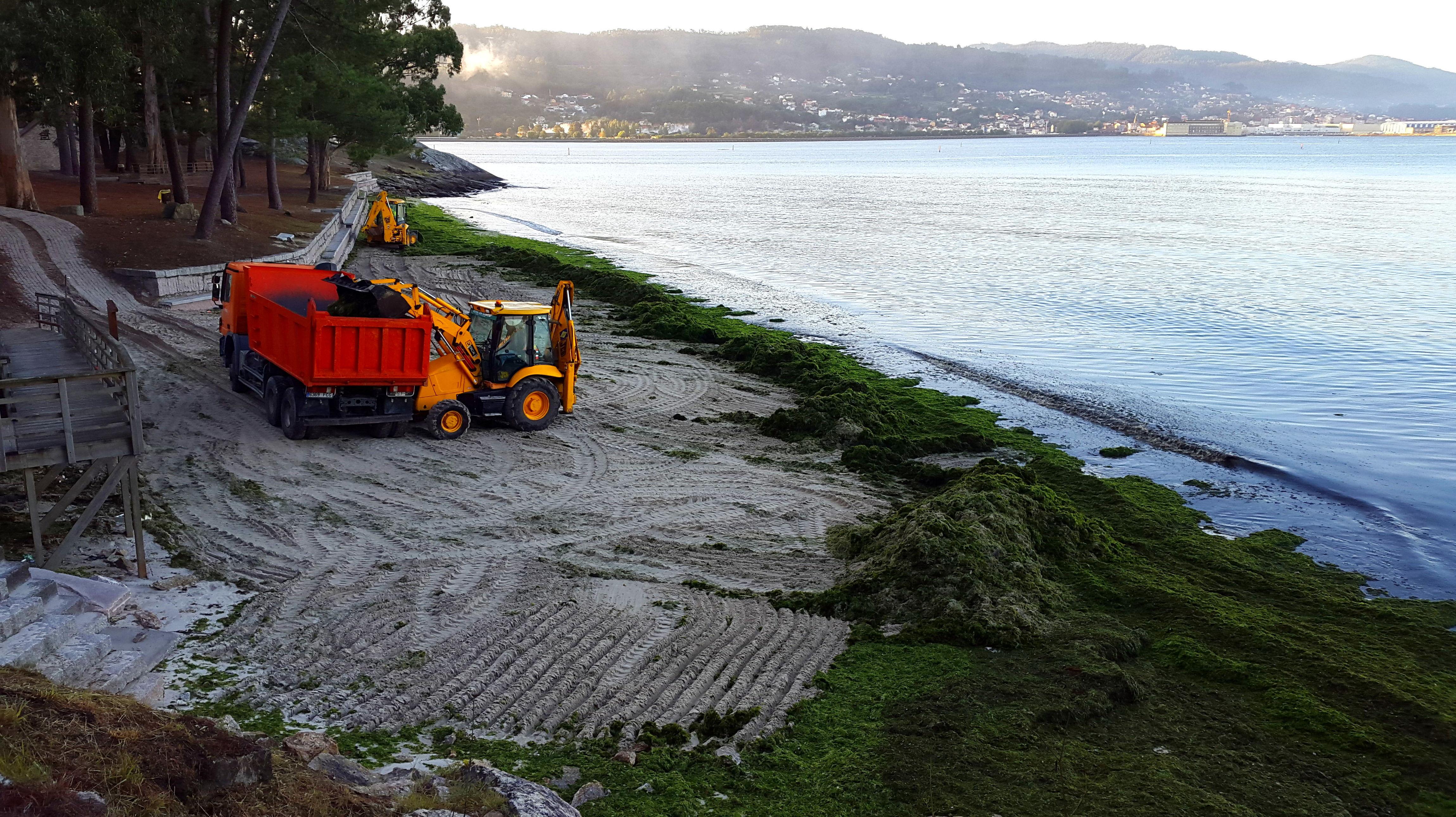 limpieza de la playa de lourido - Poio