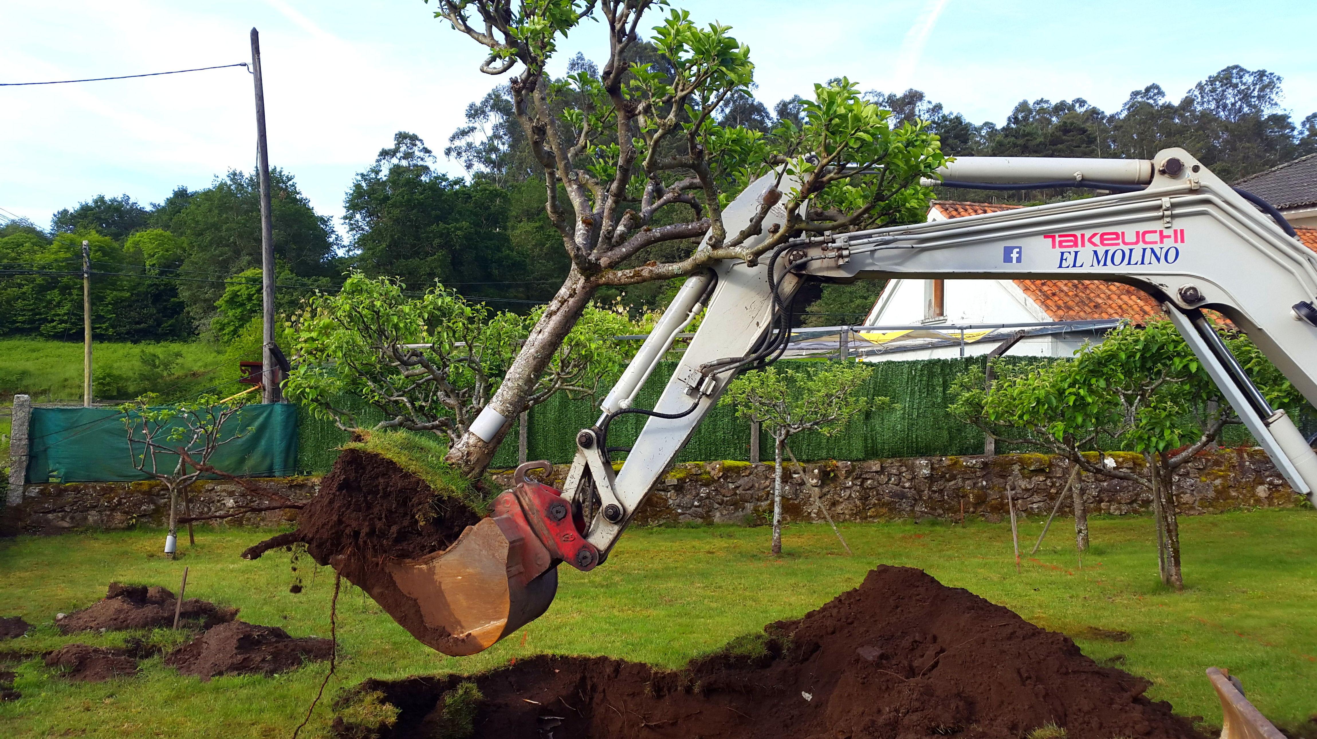 Foto 200 de Excavaciones en    Excavaciones El Molino, S.L.