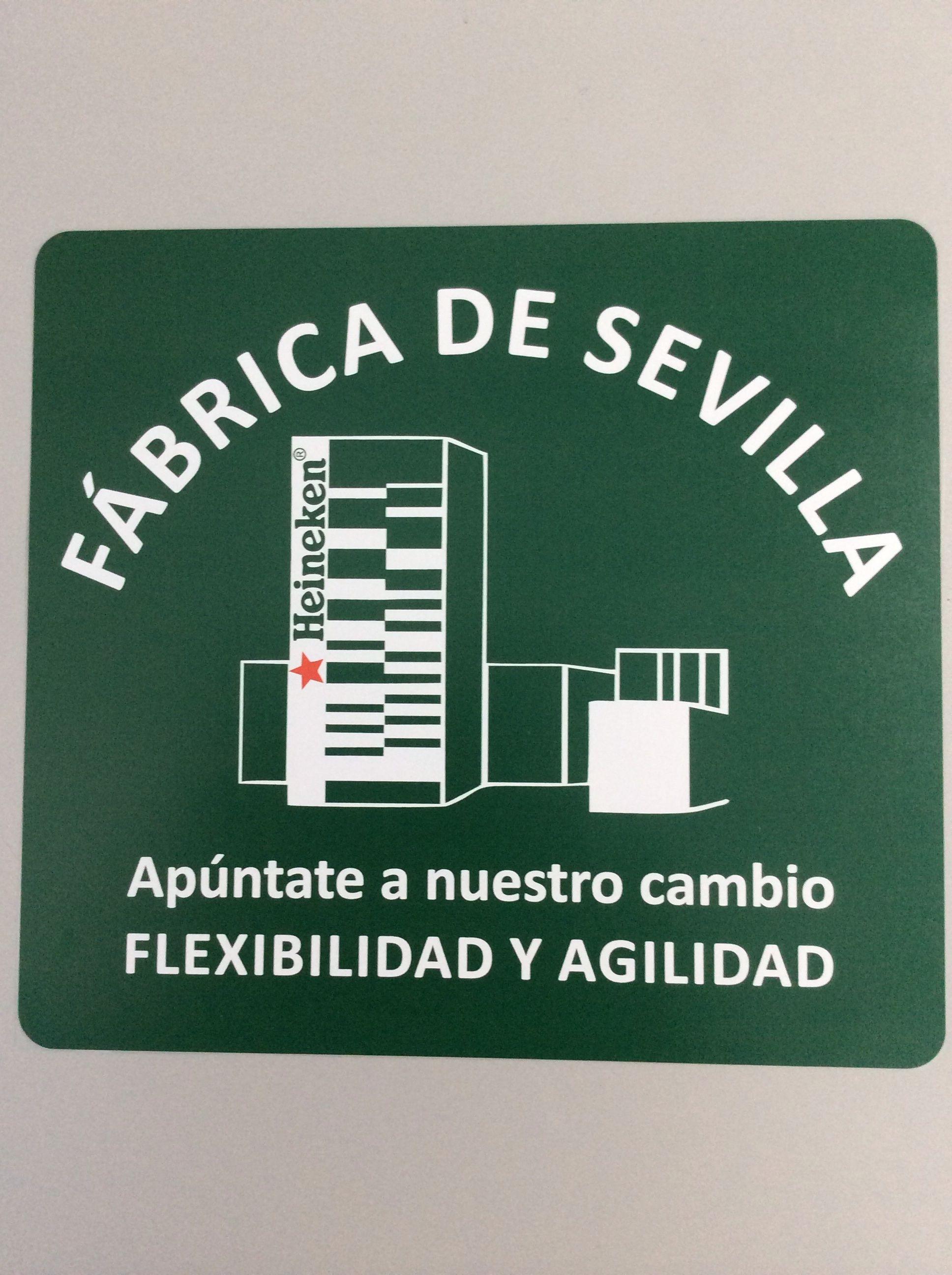Foto 14 de Bordados y encajes en Alcorcón | Bordados Tecnibor, S.L.