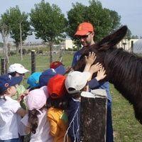 INFANTIL  Y PRIMARIA Talleres generales: actividades de El Trillo Granja Escuela / Deluxe Jardinería