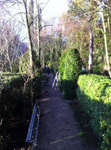 Talleres de poda de jardines en Segovia