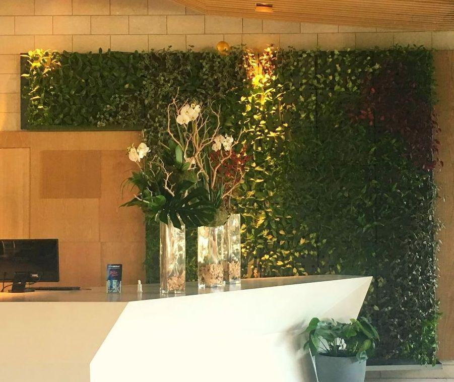 Jardín vertical de planta viva