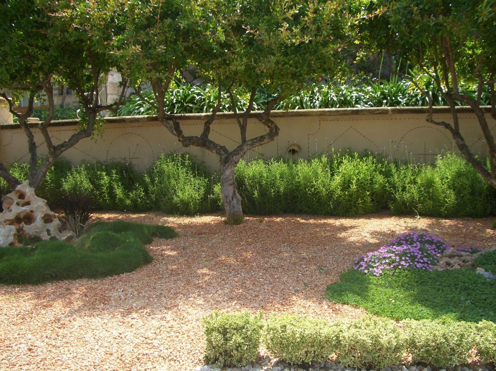 Jardínes áridos