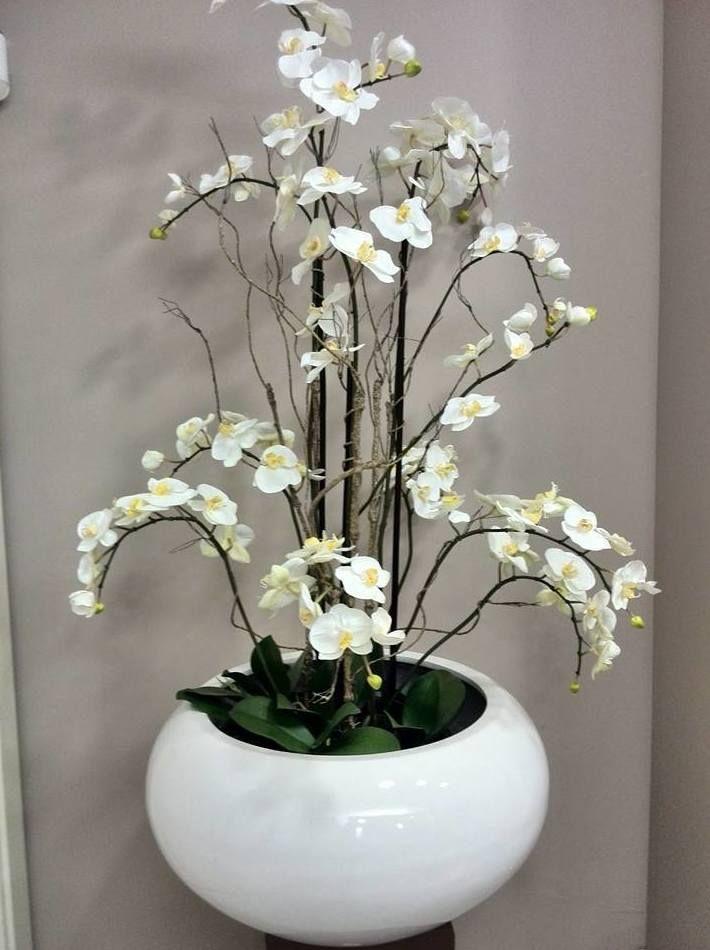 arreglos florales y plantas naturales en zaragoza