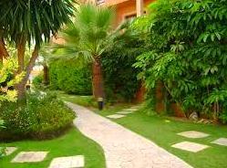 Foto 3 de Jardinería en Sonseca | El Abeto