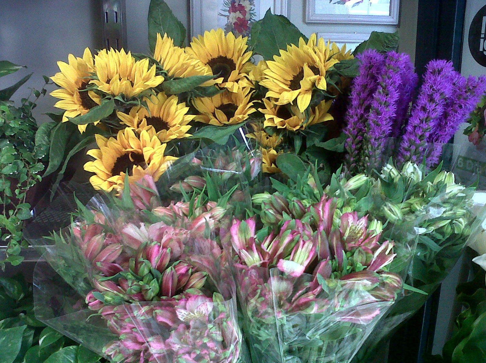 Variedad de flores productos y servicios de greenflor for Productos jardineria barcelona