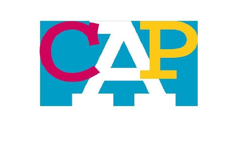 Resultado de imagen de IMAGENES CURSOS CAP
