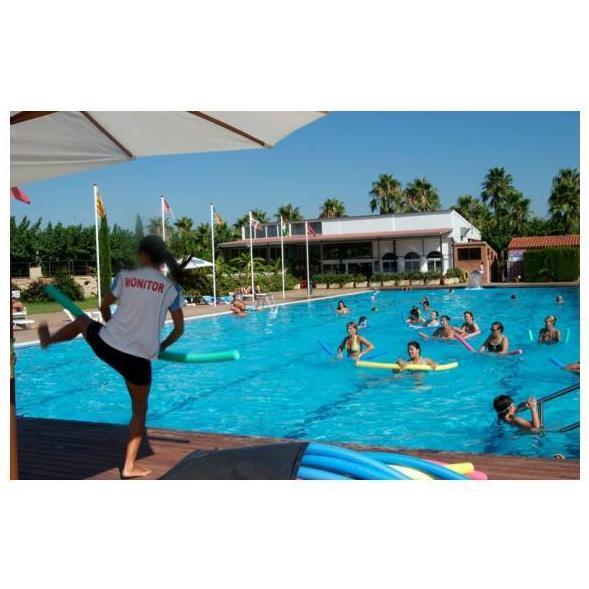 Juegos y actividades en piscina cat logo de camping playa for Hablemos de piscinas