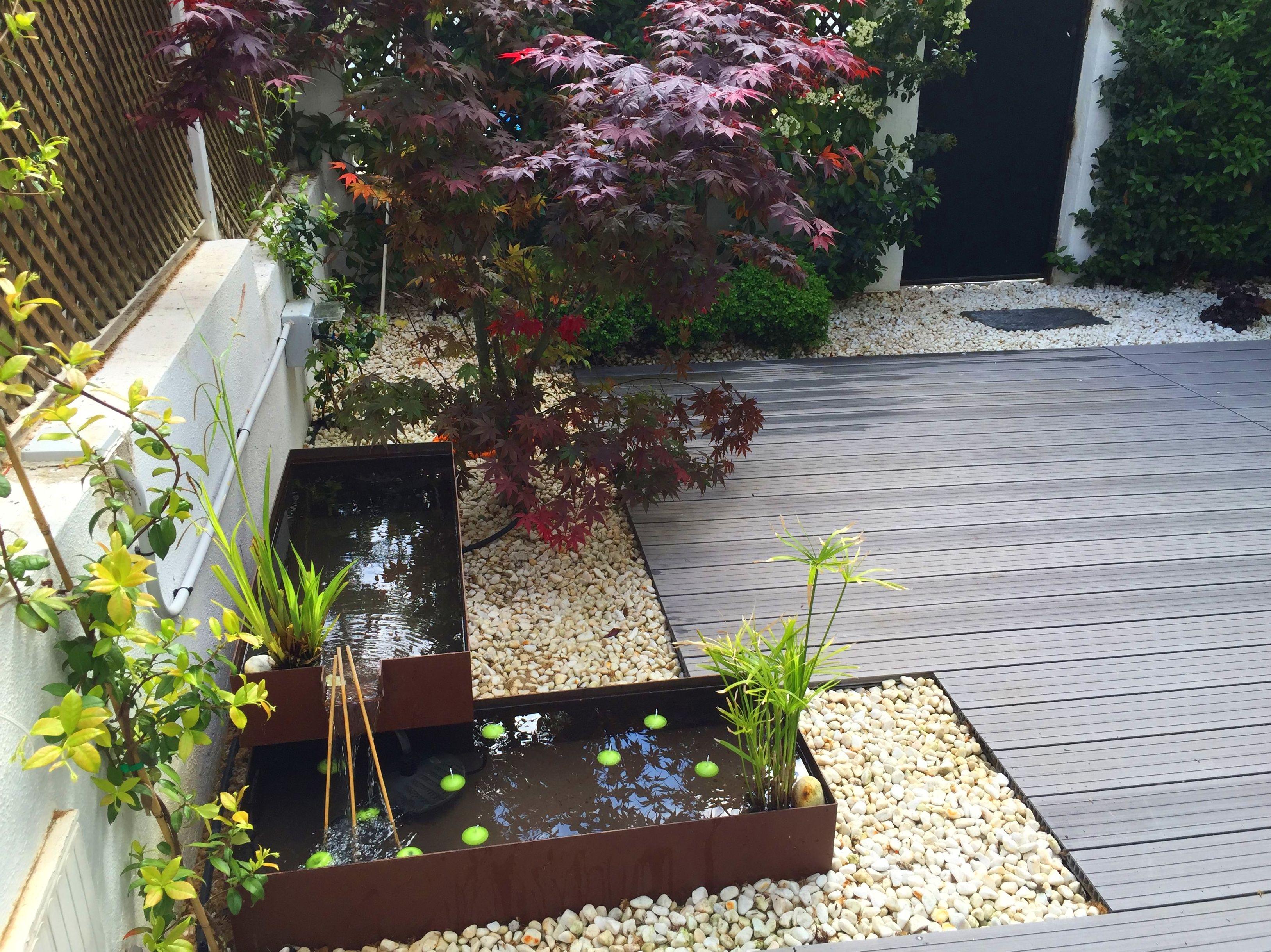 Foto 7 de dise o de jardines en azarbe jardines - Jardines en aticos ...