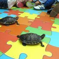 Foto 10 de Guarderías y escuelas infantiles en Alboraya   Centre d'Educació Infantil l'Andana