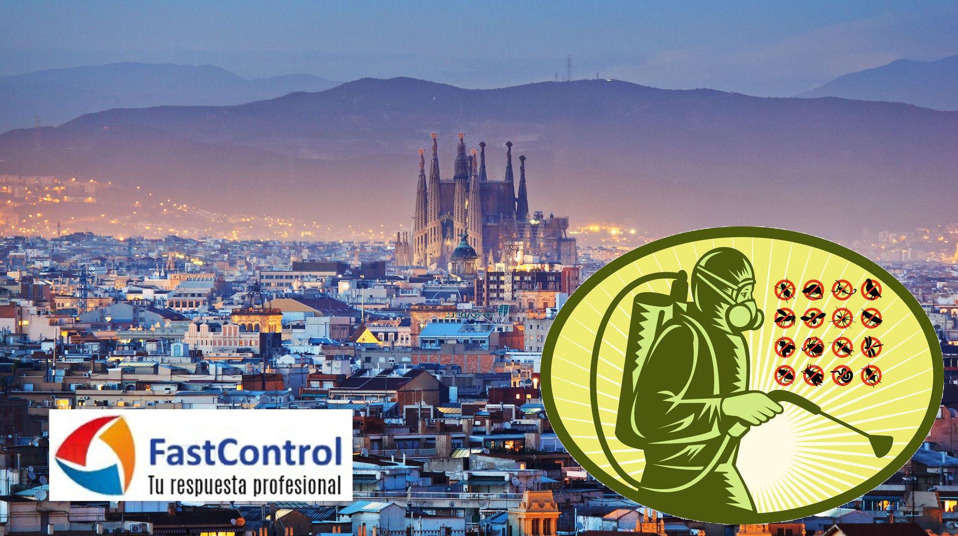 Control plagues Barcelona