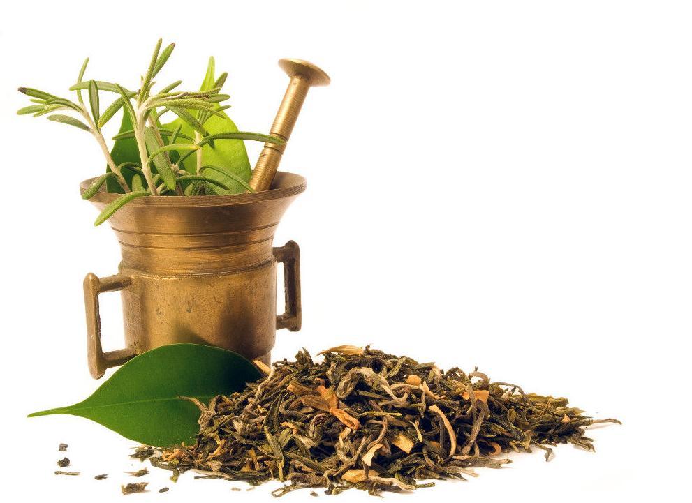 La Homeopatía: Terapias de Centro Médico Sur-Plus
