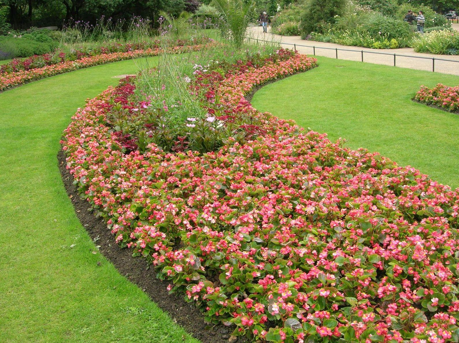 Foto 5 de jardines dise o y mantenimiento en pi lagos for Jardineria cantabria