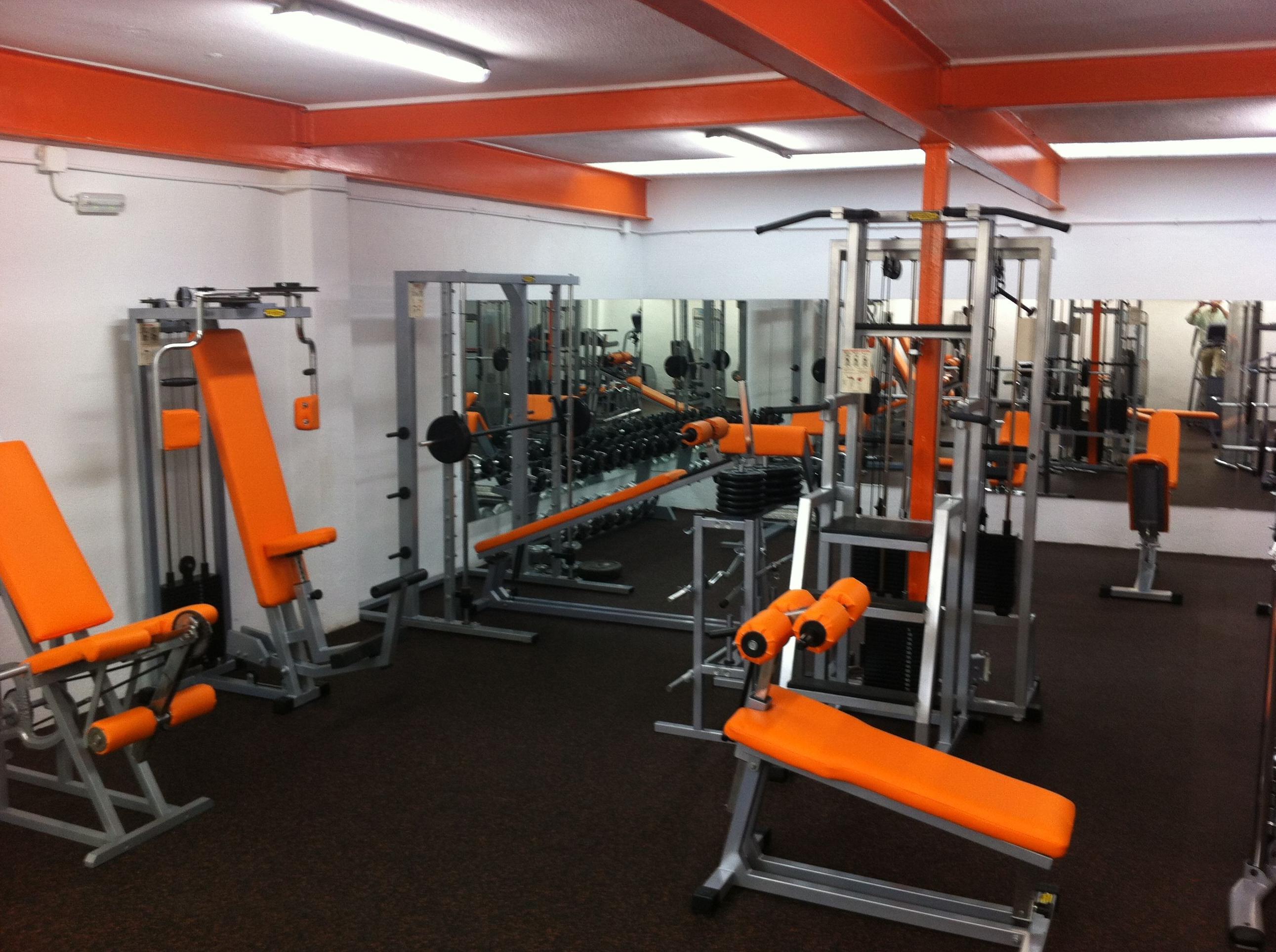 Musculaci n y sala cardio actividades de club nataci n for Gimnasio musculacion