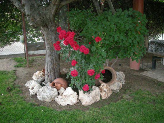 Tierra para jard n en madrid norte mallorqu n for Tierra para jardin