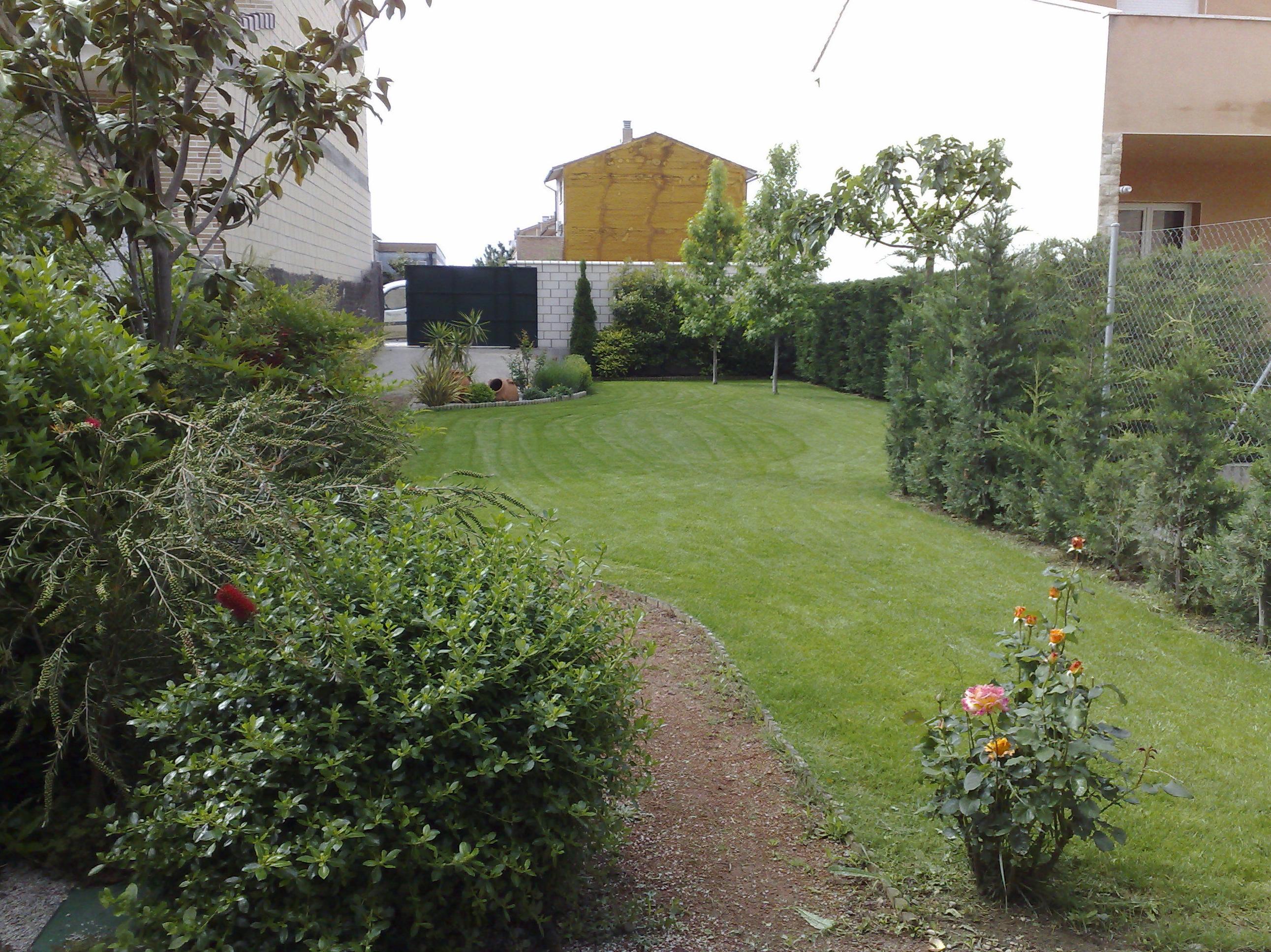 Foto 3 de Jardines (diseño y mantenimiento) en Marcilla   Jardineria El Campillo