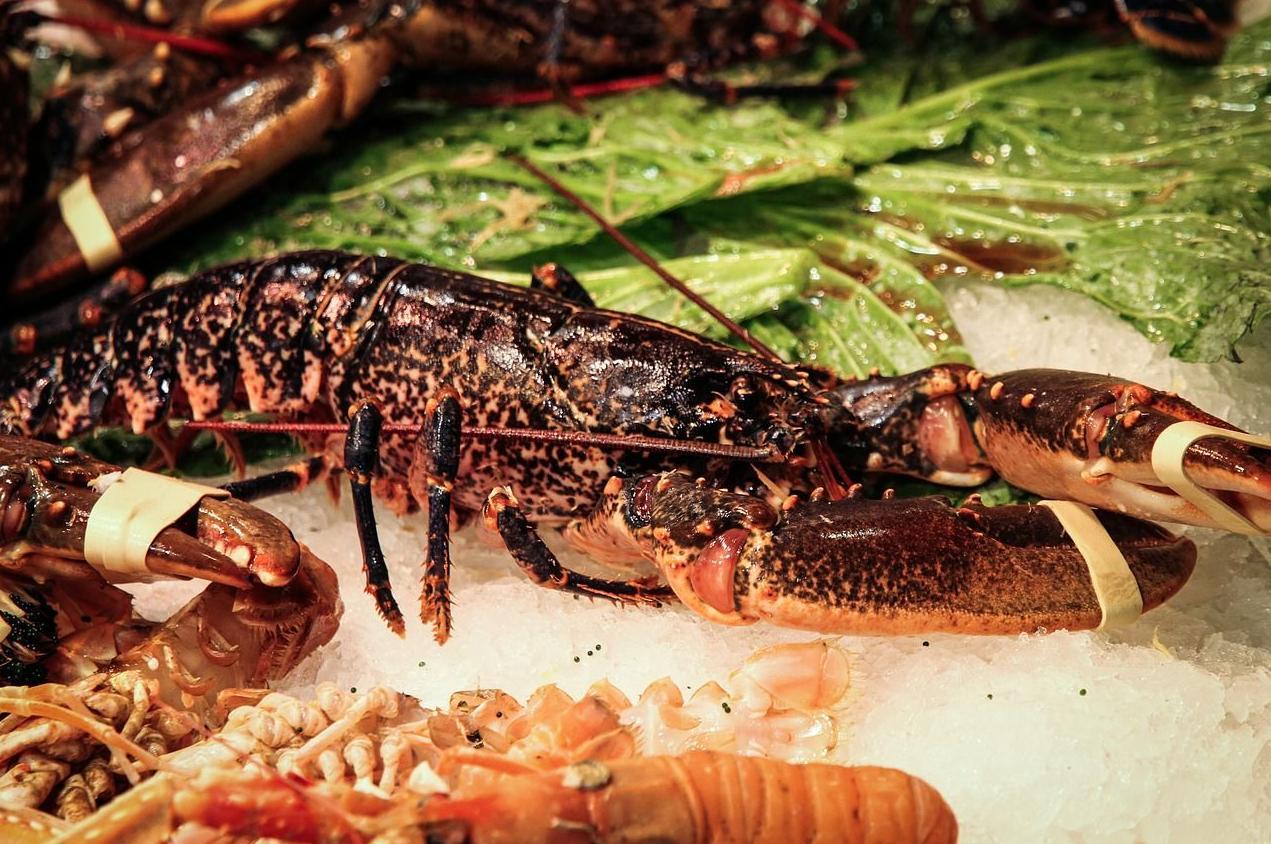 A Peneira, restaurante con carnes, mariscos y pescados de primera calidad en A Coruña