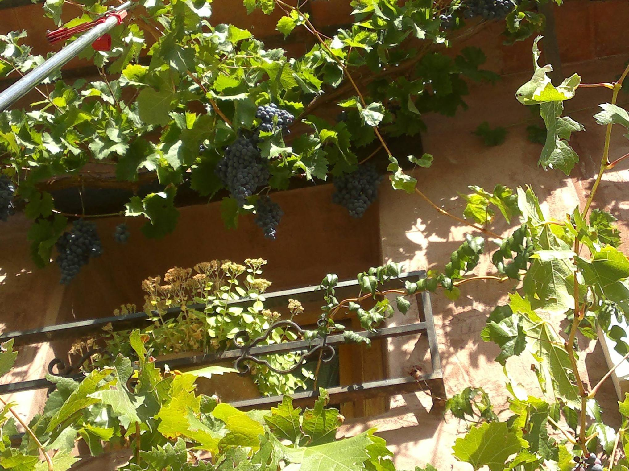 casas rurales en Gea de Albarracín