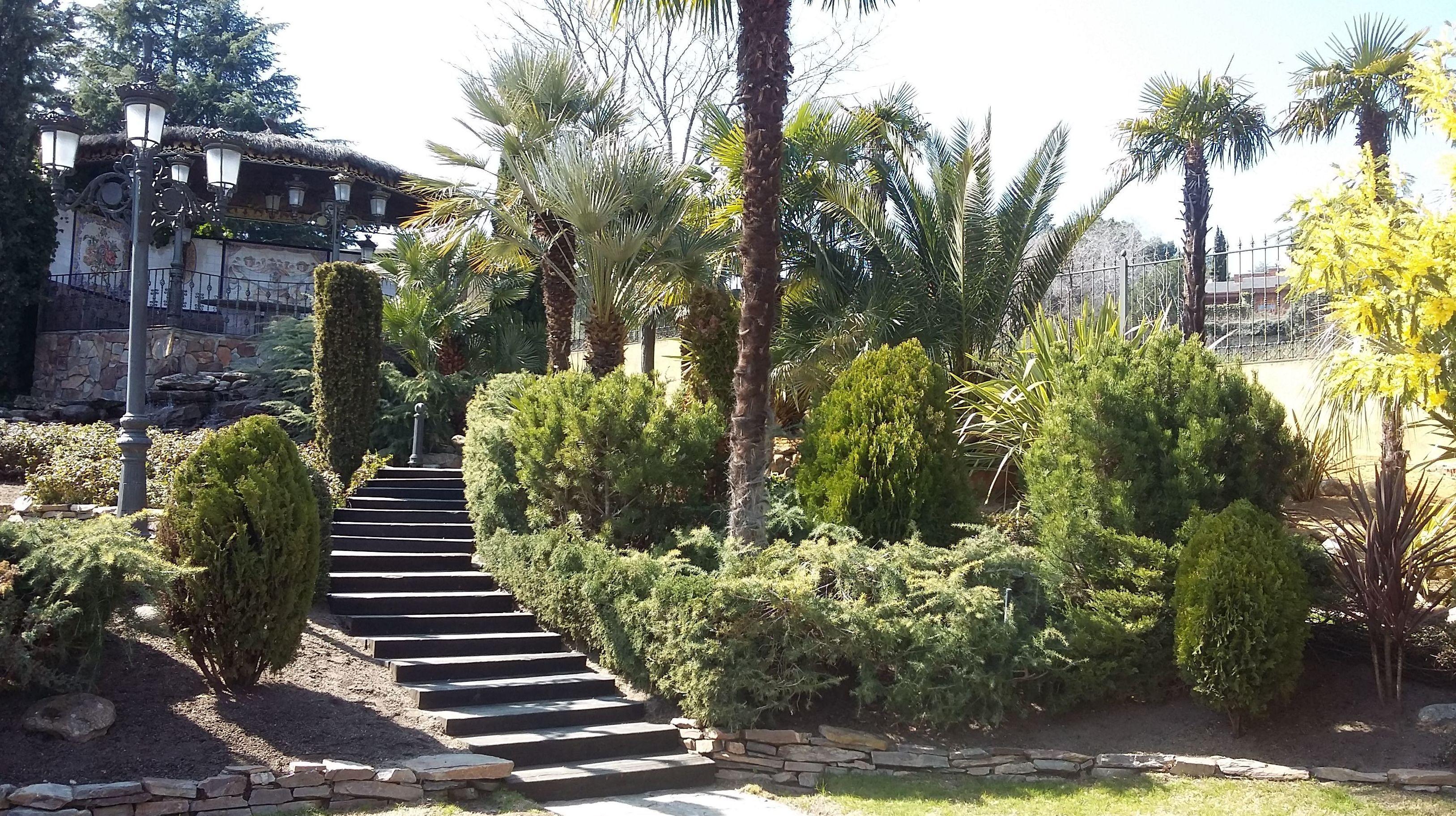 Dise o y mantenimiento de jardines en las rozas - Diseno jardines madrid ...