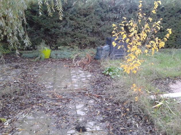trabajo duro en un jardin abandonado