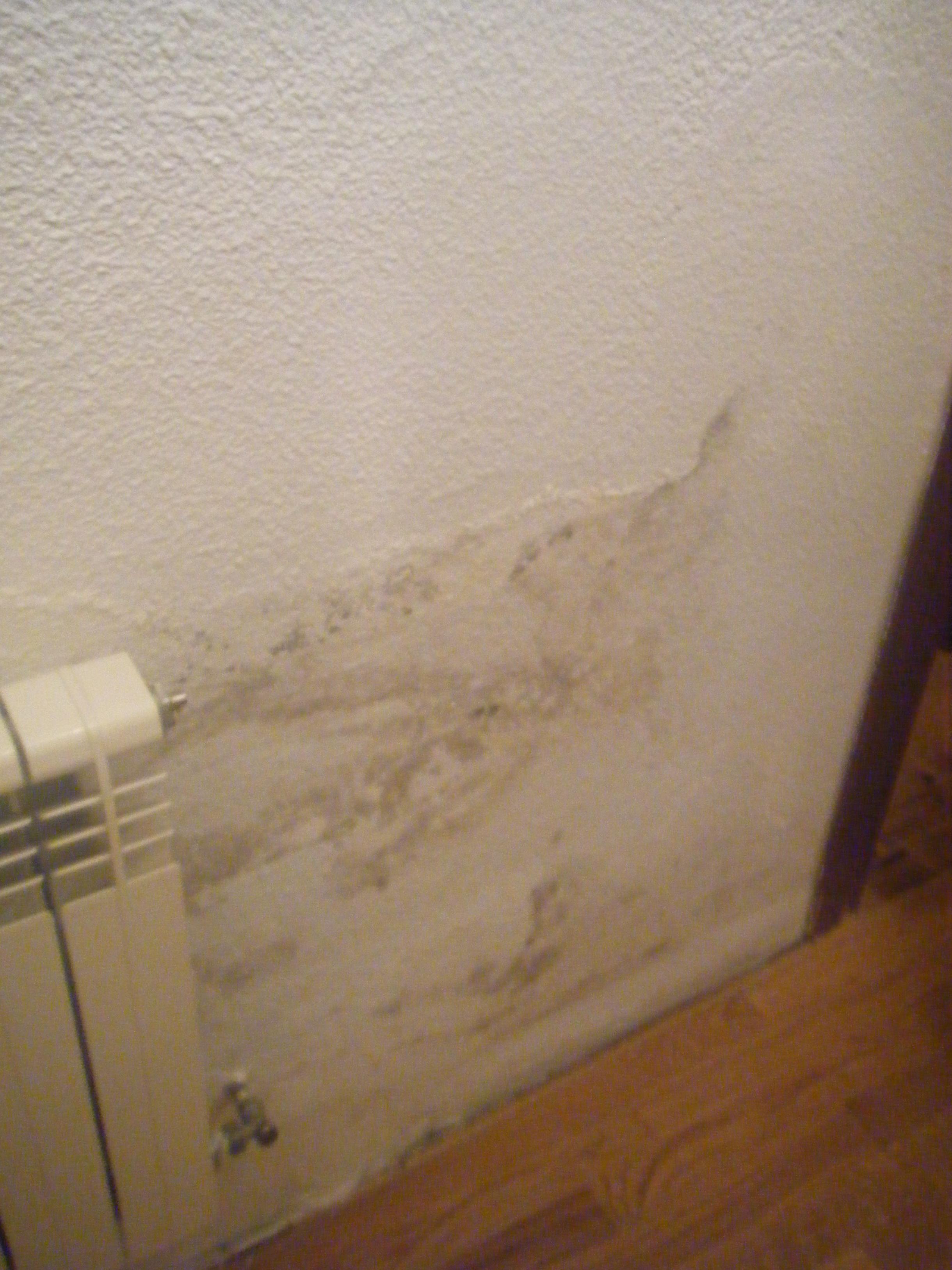 humedades en bajos de paredes