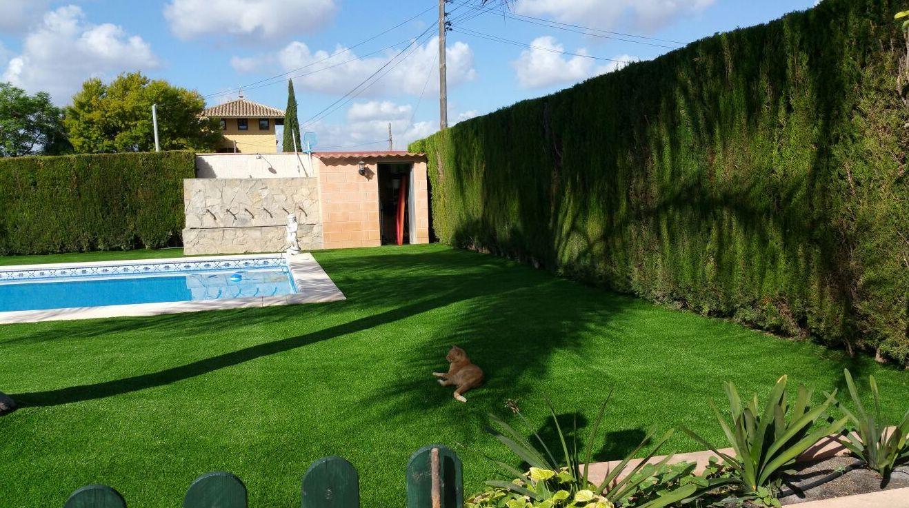 Foto 285 de dise o y mantenimiento de jardines en b tera - Cesped artificial en valencia ...