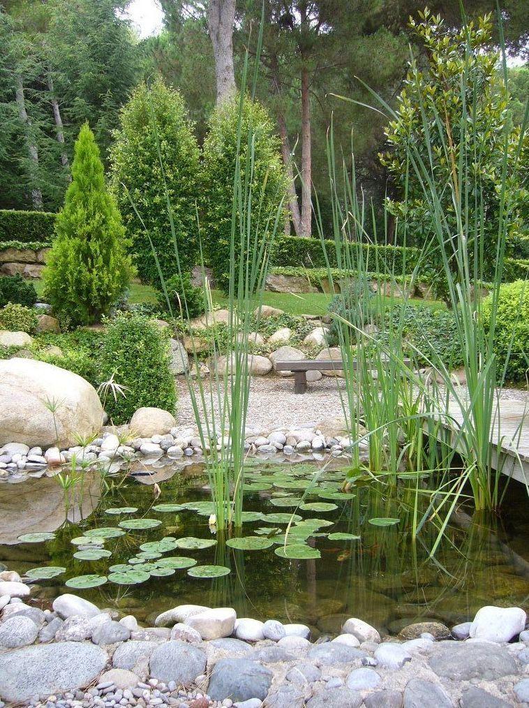 Estanques de jard n en el baix llobregat aquaplant - Estanques para jardines ...
