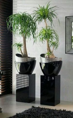 nuestro catlogo de jardineras se adapta a todos los diseos de interior