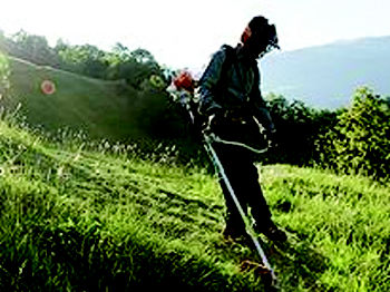 Alquiler de maquinaria para jardiner a en madrid centro a for Alquiler de cortacesped