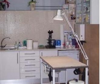 Tratamientos: Servicios de Centro Veterinario La Tortuga