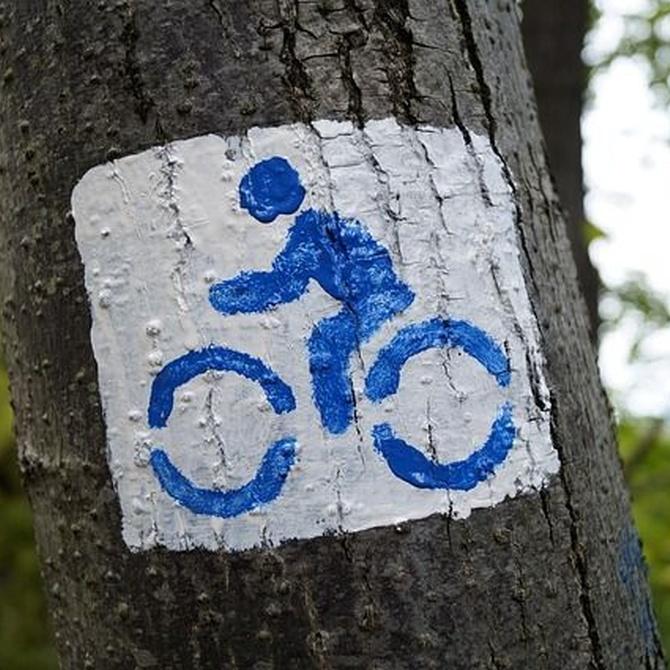 El Ayuntamiento de Vigo apuesta cada vez más por la bicicleta