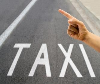 Traslados nacionales e internacionales: Servicios de Taxi Service Bergara