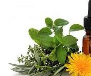 Todos los productos y servicios de Veterinarios: Clínica Veterinaria DContreras