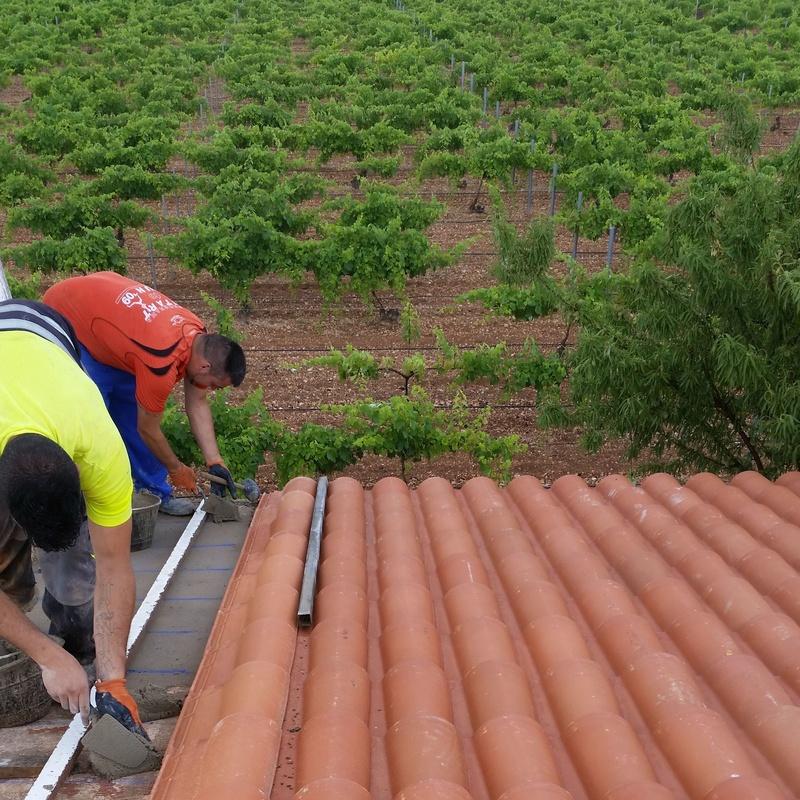 Rehabilitación de fachadas y tejados: Servicios de Canaltom