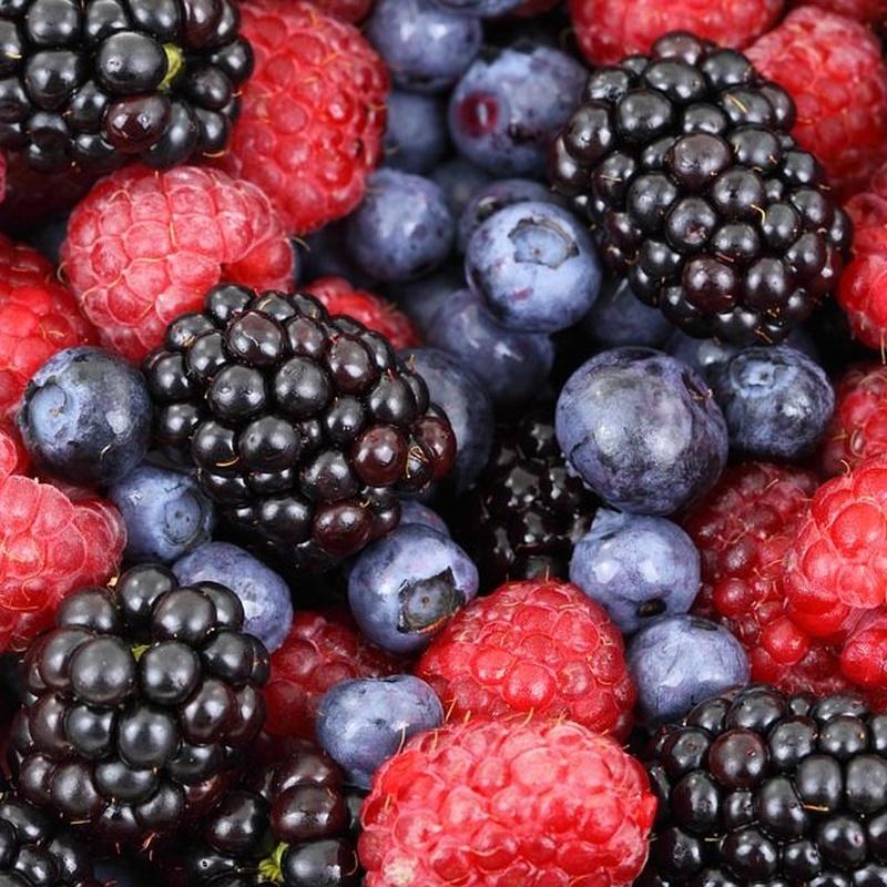 Berries: Productos de Jucamp