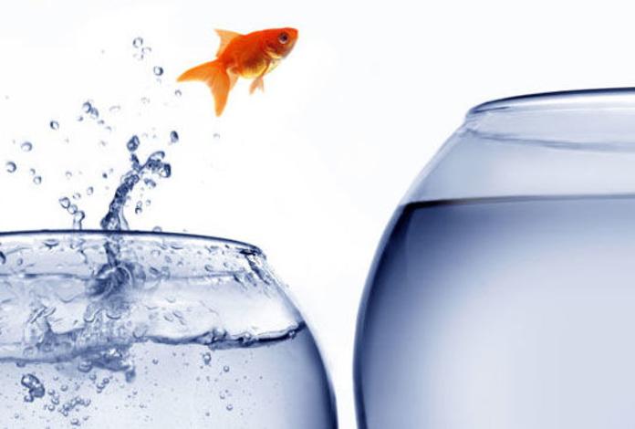 Citas de Reflexión y frases célebres de coaching