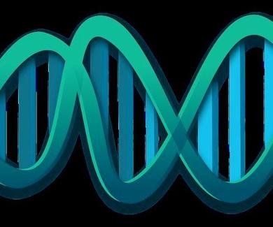 Los genes y el destino
