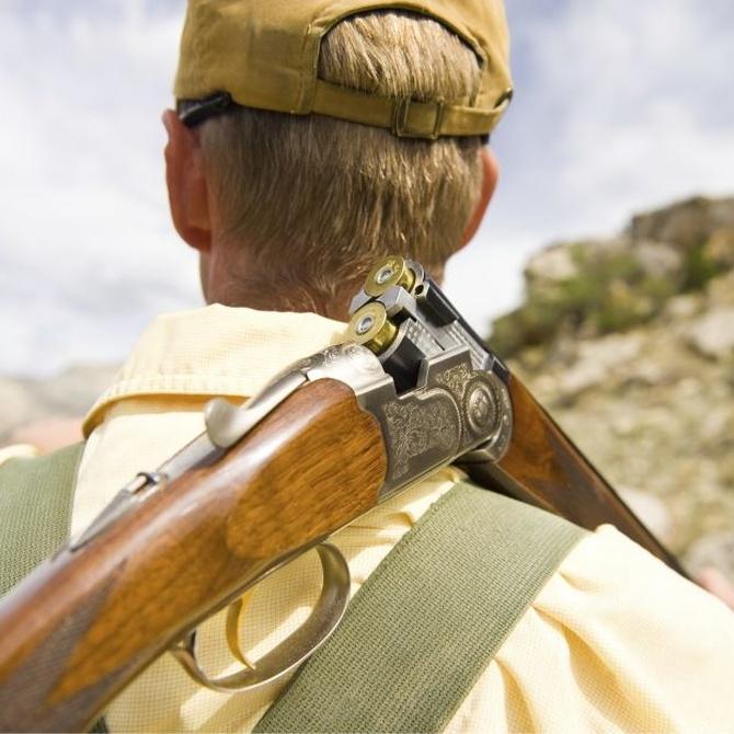 La licencia de armas Tipo E