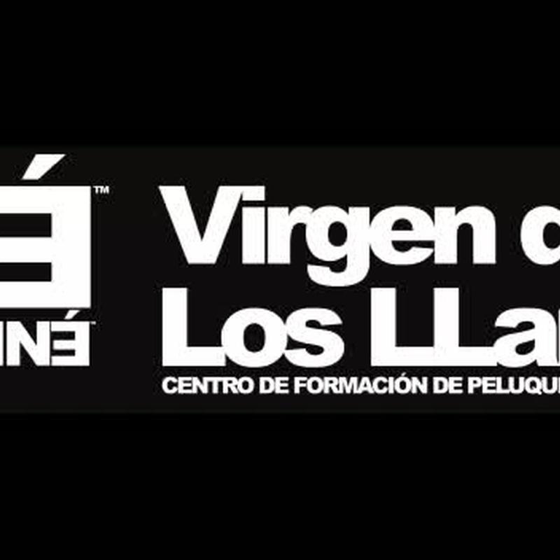 Trabajos de los alumnos: Cursos peluquería y estética de Centro de formación Virgen de los Llanos- Moliné