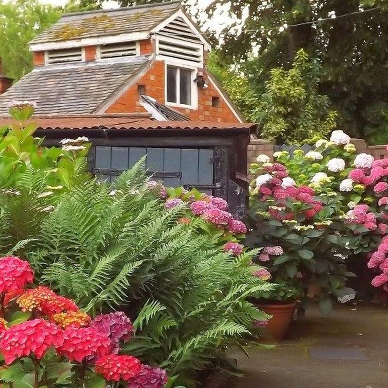 Jardinería: Productos y servicios de Marga Garden