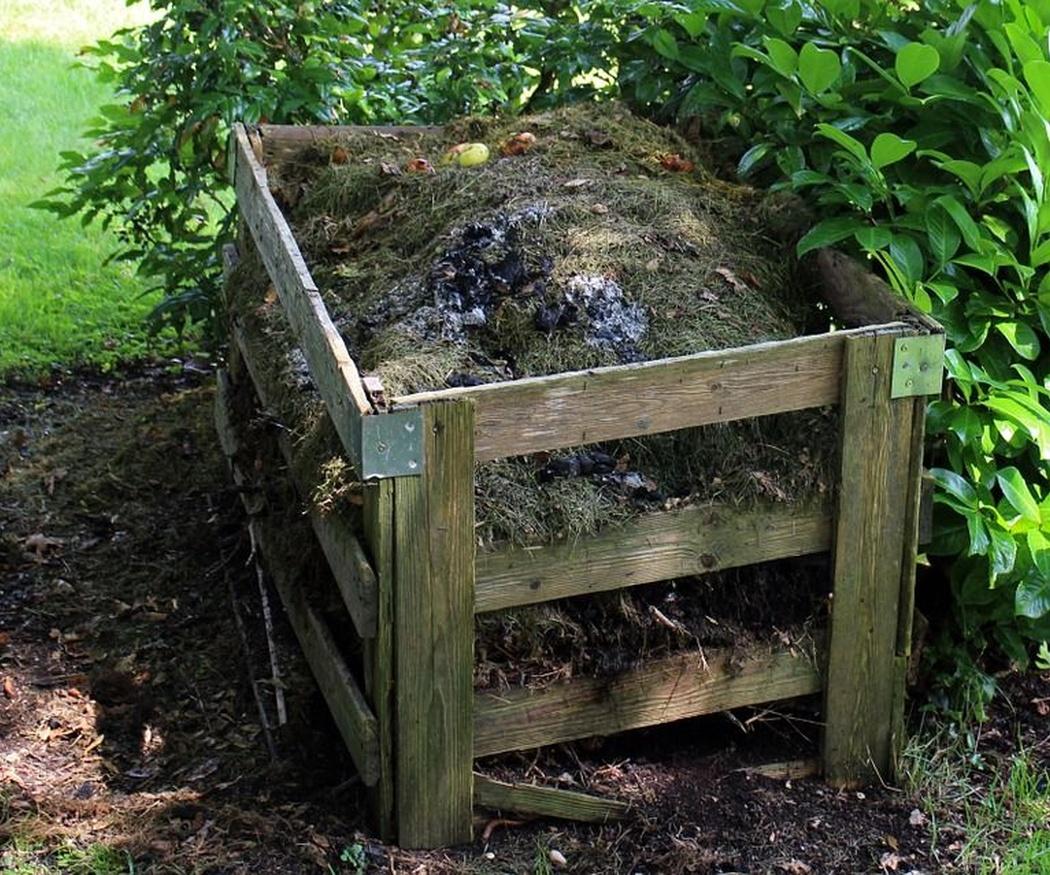 Cuáles son los tipos de abonos que existen para tu jardín