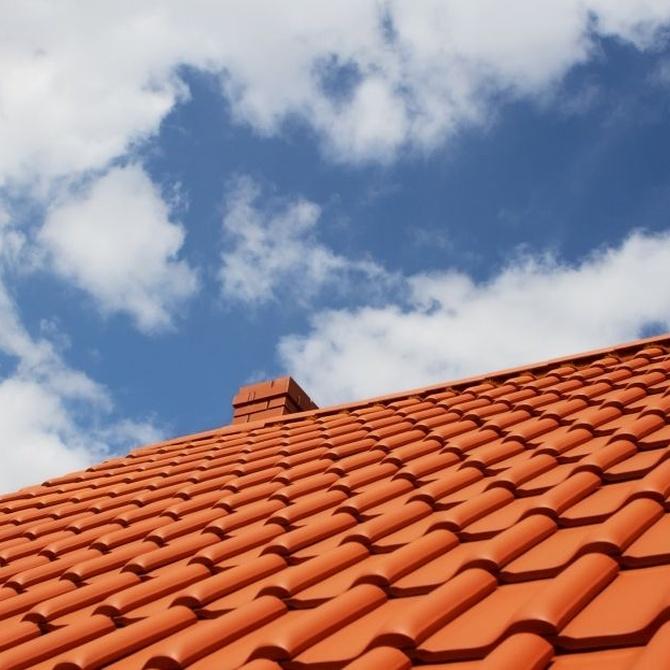 La importancia de la limpieza de los tejados y azoteas