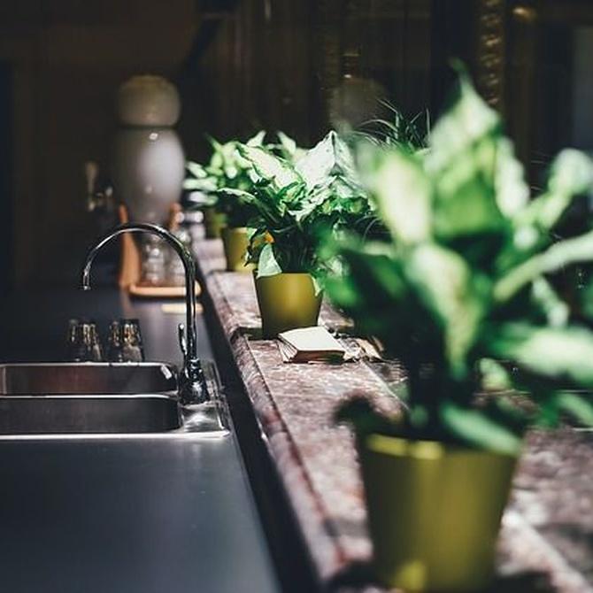 Los tonos oscuros crean cocinas elegantes