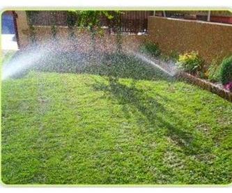 Diseño y ejecución de jardines: Servicios de Xana