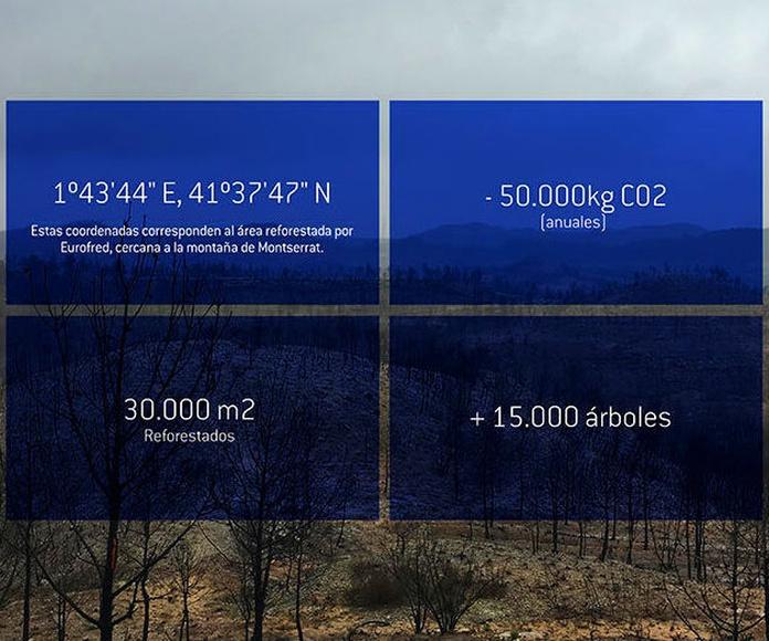 Replantación de árboles - Eurofred