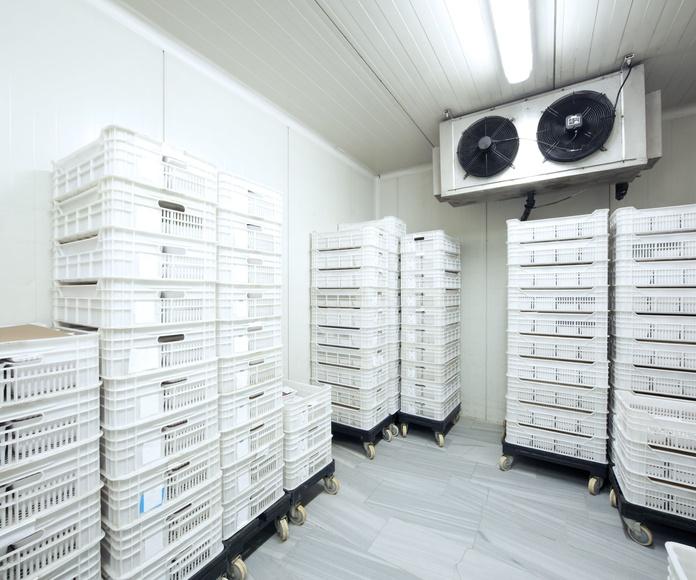 Sistemas de climatización y refrigeración