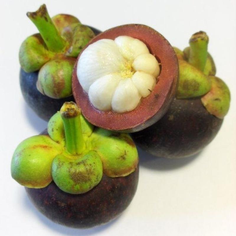 Mangostán: Productos de Mundifruit
