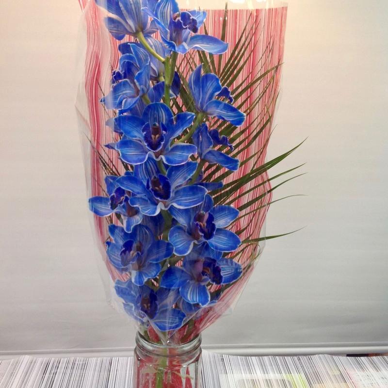 Bara de orquídeas grande: Servicios de Floristería Contreras